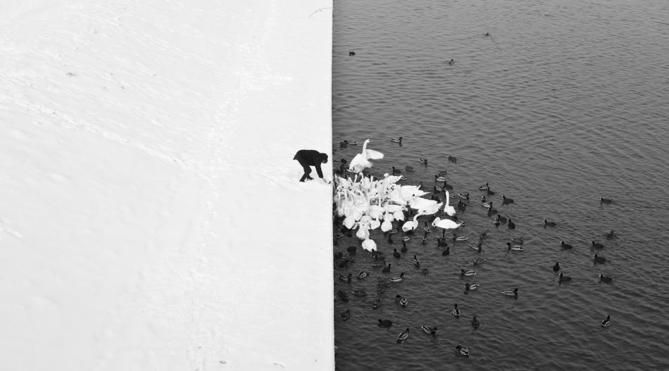 black and white by Marcin Ryczek