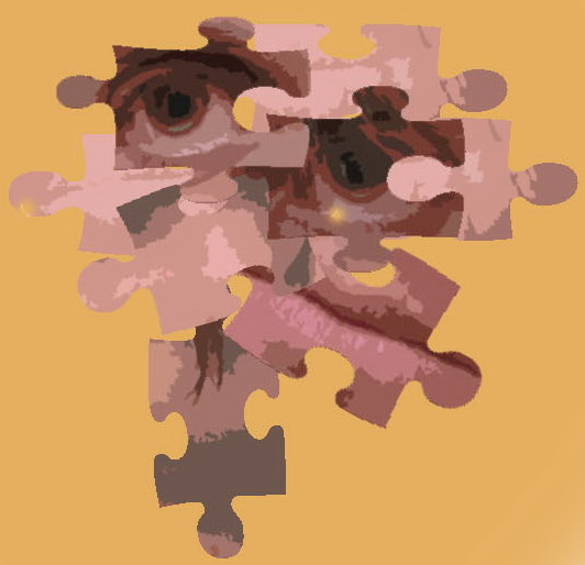 my face 1 puzzle