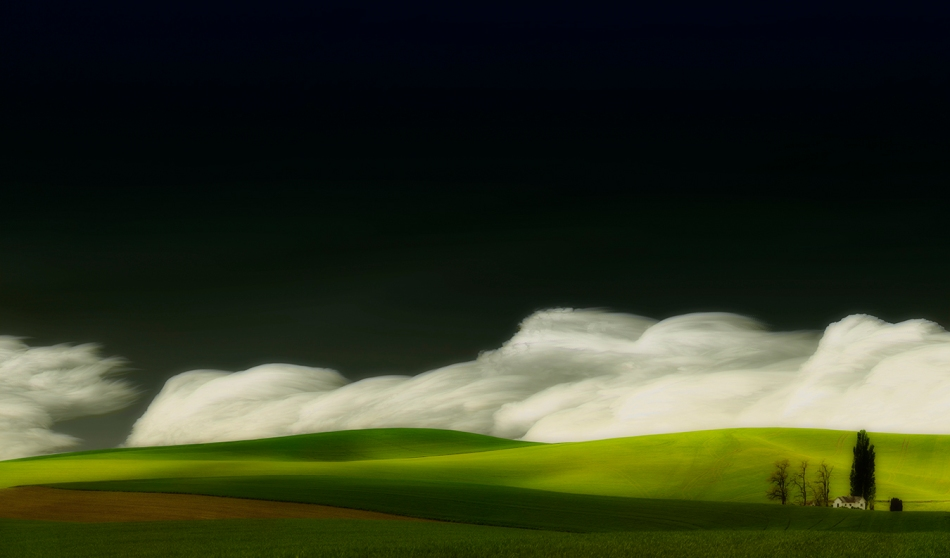 Art-of-Farmland-Palouse-No2 by Lisa Wood