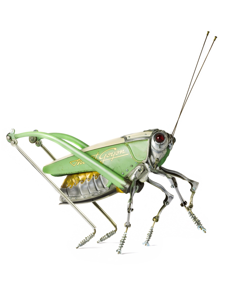 Grasshopper by Edouard Martinet