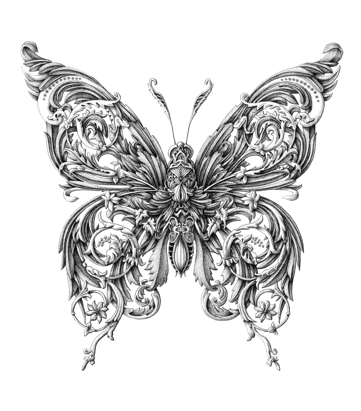 Butterfly Drawings: Home Is Where The HARD DISK Is