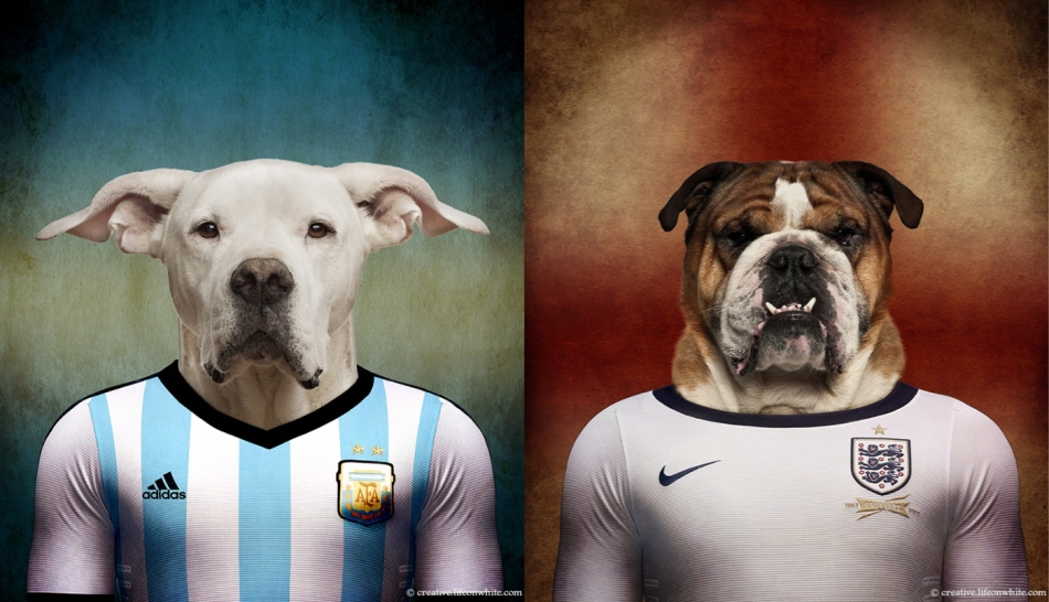 Dogs of the World Cup by Life on White