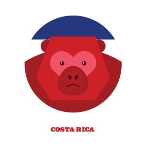 the Animal Allstars Costa Rica by Splinter