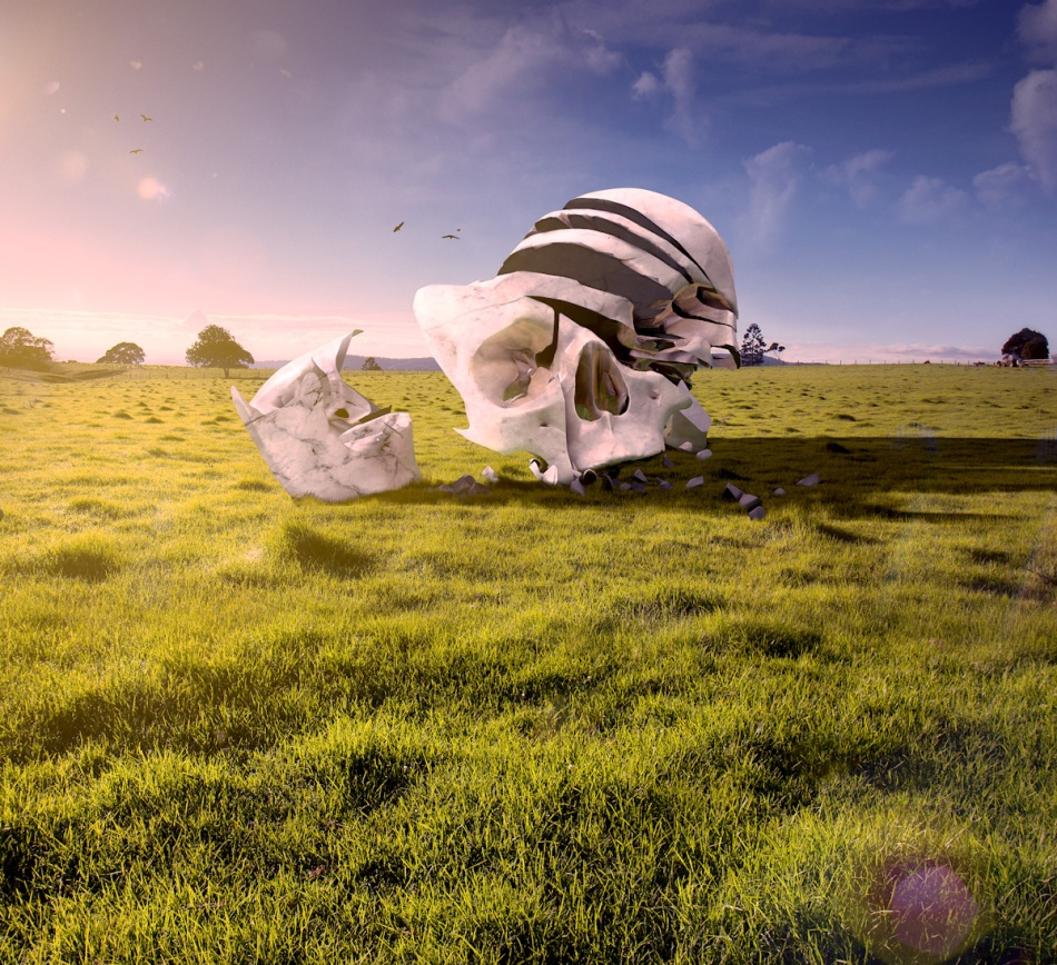 Skull Field by Anthony Hearsey