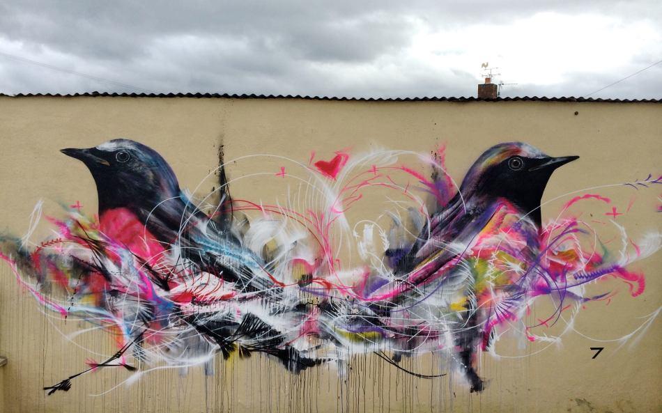 birds by  Luis Seven Martins