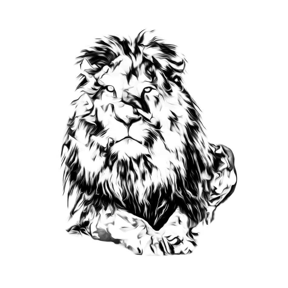 LION1 by Iordanis Passas